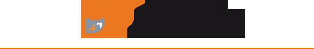 logo-df-detection-avec-filet